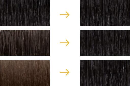 Antes y después con 1N